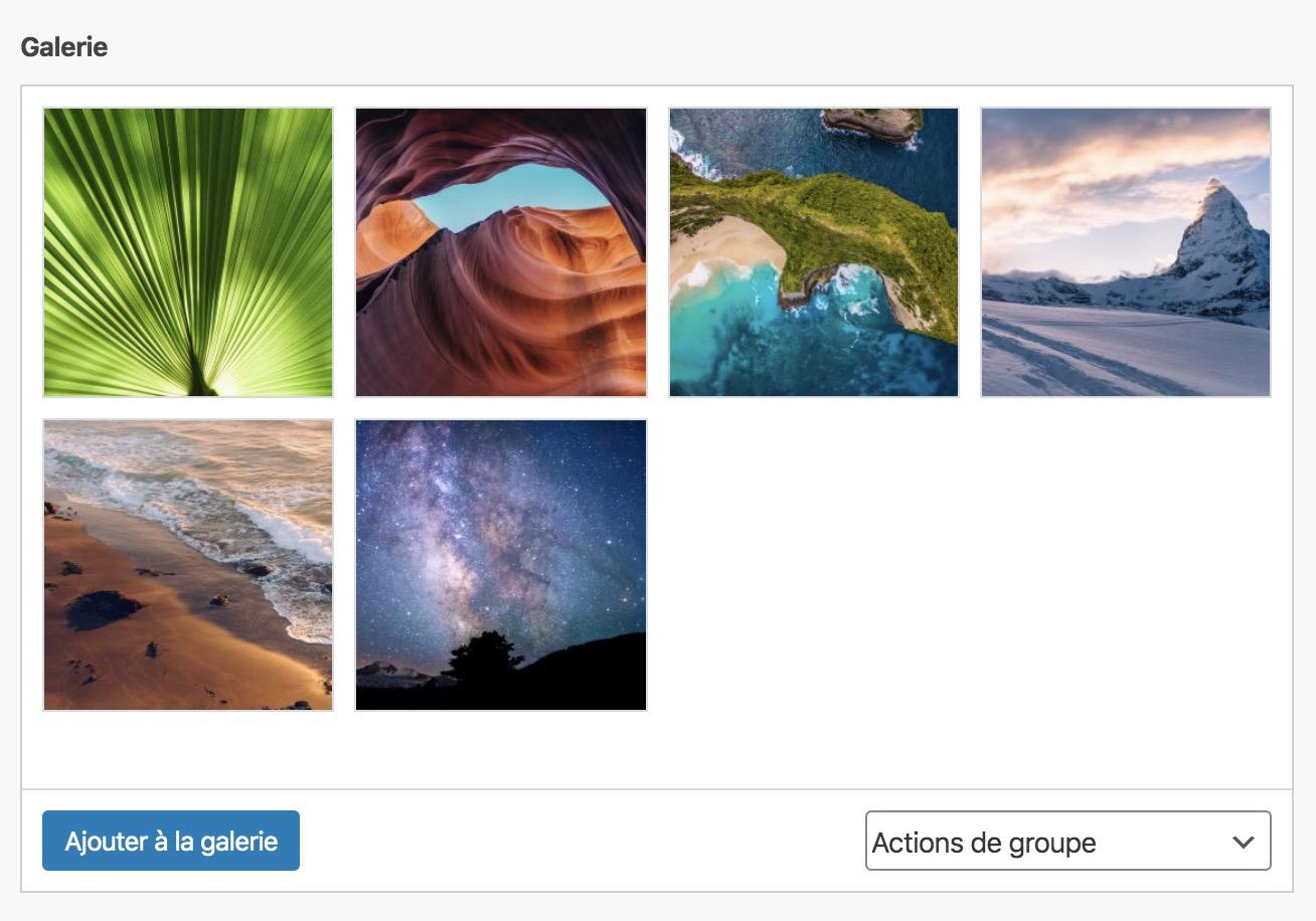Le champ galerie d'Images d'ACF