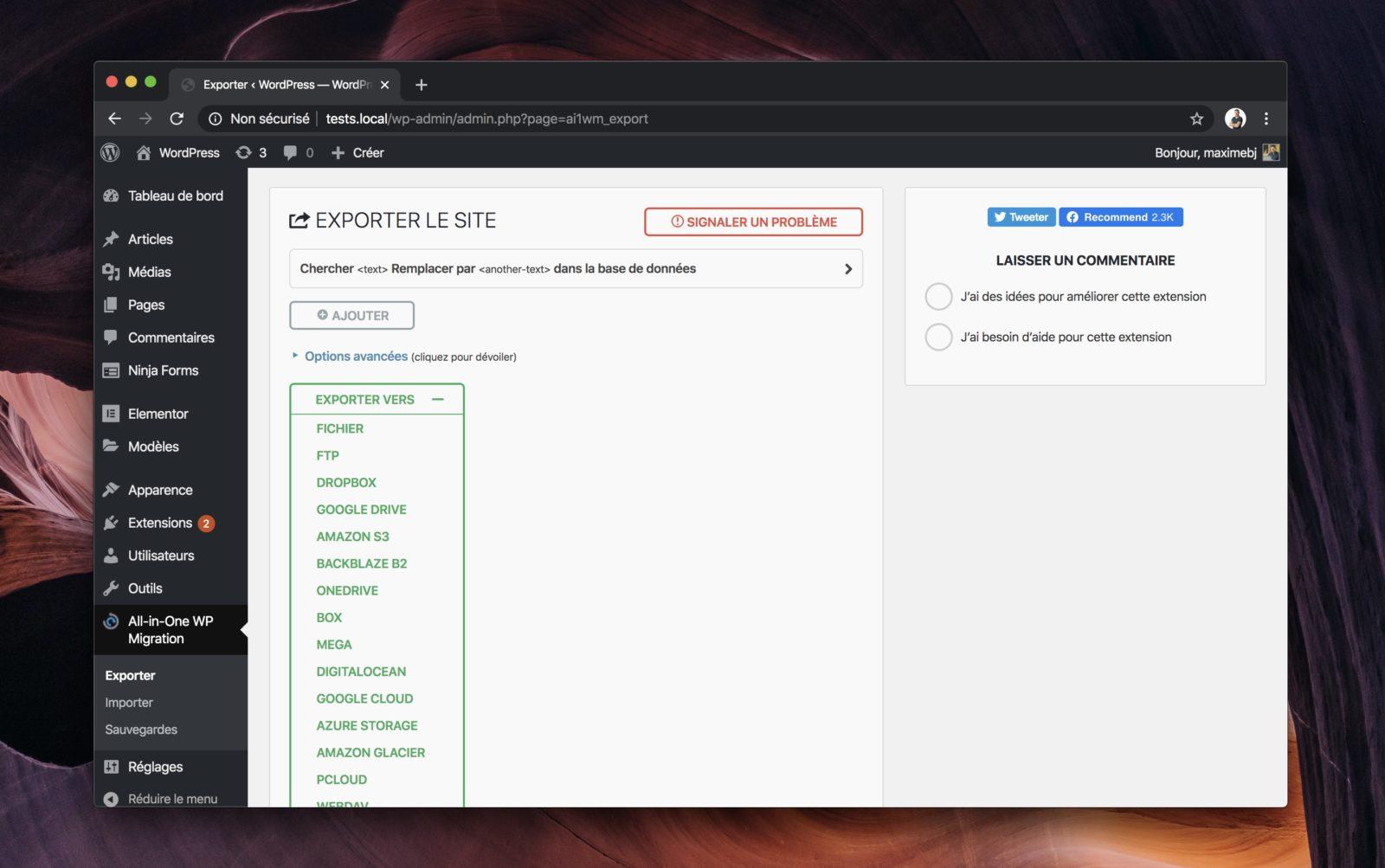 Capture d'écran de All-in-One WP Migration montrant l'interface d'export de site